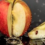 Dog Ate Apple Core