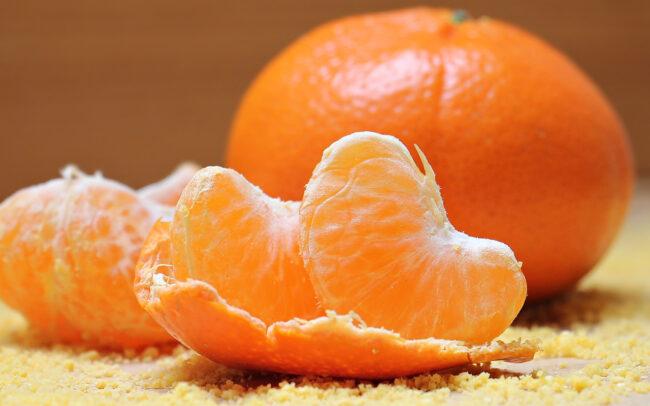 Dog Ate Orange Peel
