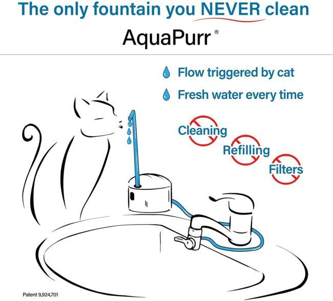 Automatic Cat Faucet